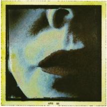 Antonietta Covino-Beehre – Shadow of the Night